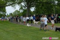 Paws Across The Hamptons Dog Walk To Benefit Southampton Hospital & Animal Shelter Foundation #176