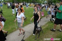 Paws Across The Hamptons Dog Walk To Benefit Southampton Hospital & Animal Shelter Foundation #194