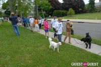 Paws Across The Hamptons Dog Walk To Benefit Southampton Hospital & Animal Shelter Foundation #208