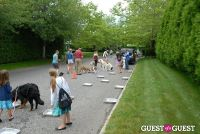 Paws Across The Hamptons Dog Walk To Benefit Southampton Hospital & Animal Shelter Foundation #219