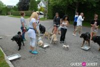 Paws Across The Hamptons Dog Walk To Benefit Southampton Hospital & Animal Shelter Foundation #221