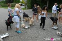 Paws Across The Hamptons Dog Walk To Benefit Southampton Hospital & Animal Shelter Foundation #223