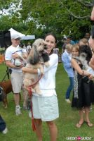 Paws Across The Hamptons Dog Walk To Benefit Southampton Hospital & Animal Shelter Foundation #301