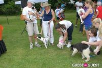 Paws Across The Hamptons Dog Walk To Benefit Southampton Hospital & Animal Shelter Foundation #305