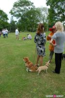 Paws Across The Hamptons Dog Walk To Benefit Southampton Hospital & Animal Shelter Foundation #335