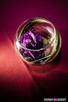American Heart Association - Heart Ball 2012 #18