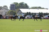 Bridgehampton Polo 2012 #31