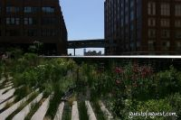 Target High Line Street Festival #25