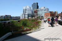 Target High Line Street Festival #26