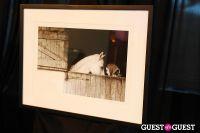 V&M Celebrates Sam Haskins Iconic Photography #9