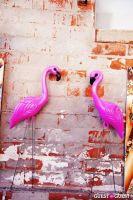 WASTELAND + MINK PINK'S WASTED DAZE, Sponsored by LA CANVAS #15