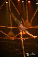 Cirque Du Soleil: TOTEM #5