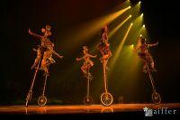 Cirque Du Soleil: TOTEM #40