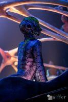 Cirque Du Soleil: TOTEM #58