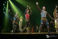 Cirque Du Soleil: TOTEM #79