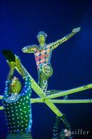 Cirque Du Soleil: TOTEM #84