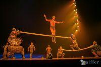 Cirque Du Soleil: TOTEM #91