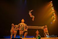 Cirque Du Soleil: TOTEM #93