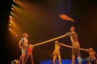 Cirque Du Soleil: TOTEM #97