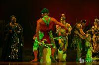 Cirque Du Soleil: TOTEM #154