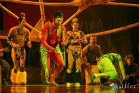 Cirque Du Soleil: TOTEM #155