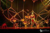 Cirque Du Soleil: TOTEM #157