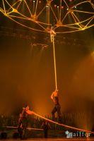 Cirque Du Soleil: TOTEM #163