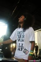 Mad Decent Block Party 2012 #57