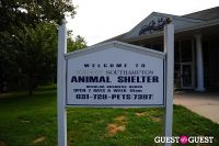 Jean Shafiroff and Dog Trainer Bill Grimmer Visit Southampton Animal Shelter #2