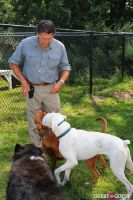 Jean Shafiroff and Dog Trainer Bill Grimmer Visit Southampton Animal Shelter #30
