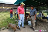 Jean Shafiroff and Dog Trainer Bill Grimmer Visit Southampton Animal Shelter #45