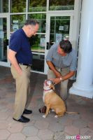 Jean Shafiroff and Dog Trainer Bill Grimmer Visit Southampton Animal Shelter #69