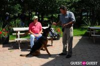 Jean Shafiroff and Dog Trainer Bill Grimmer Visit Southampton Animal Shelter #82