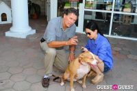 Jean Shafiroff and Dog Trainer Bill Grimmer Visit Southampton Animal Shelter #101