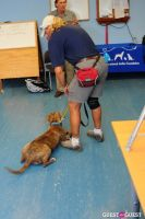Jean Shafiroff and Dog Trainer Bill Grimmer Visit Southampton Animal Shelter #117
