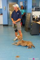 Jean Shafiroff and Dog Trainer Bill Grimmer Visit Southampton Animal Shelter #118