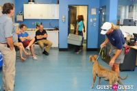 Jean Shafiroff and Dog Trainer Bill Grimmer Visit Southampton Animal Shelter #119