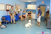 Jean Shafiroff and Dog Trainer Bill Grimmer Visit Southampton Animal Shelter #134