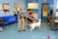 Jean Shafiroff and Dog Trainer Bill Grimmer Visit Southampton Animal Shelter #138