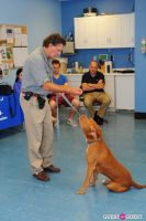 Jean Shafiroff and Dog Trainer Bill Grimmer Visit Southampton Animal Shelter #144