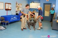 Jean Shafiroff and Dog Trainer Bill Grimmer Visit Southampton Animal Shelter #154