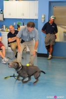 Jean Shafiroff and Dog Trainer Bill Grimmer Visit Southampton Animal Shelter #163