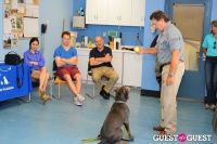 Jean Shafiroff and Dog Trainer Bill Grimmer Visit Southampton Animal Shelter #165