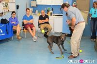 Jean Shafiroff and Dog Trainer Bill Grimmer Visit Southampton Animal Shelter #166
