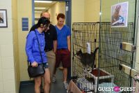 Jean Shafiroff and Dog Trainer Bill Grimmer Visit Southampton Animal Shelter #179