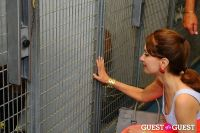 Jean Shafiroff and Dog Trainer Bill Grimmer Visit Southampton Animal Shelter #218