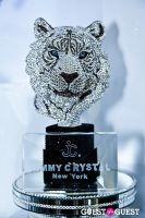 Jimmy Crystal New York and Swarovski Elements