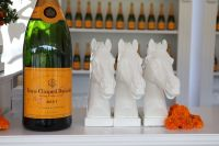 Veuve Clicquot Polo Classic Los Angeles #19