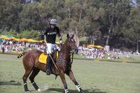 Veuve Clicquot Polo Classic Los Angeles #172