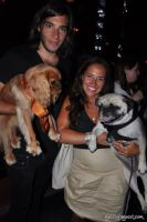 Animal Fair Magazine's 10th Annual Paws For Style #103